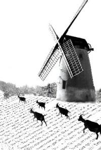Les_Lettres_de_mon_moulin